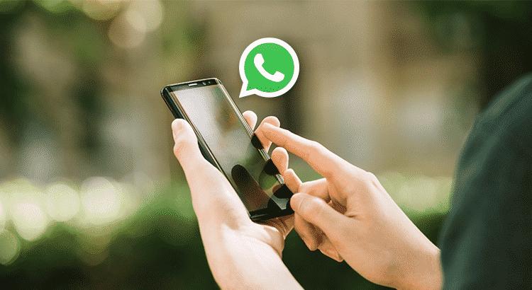 software de envio em massa whatsapp